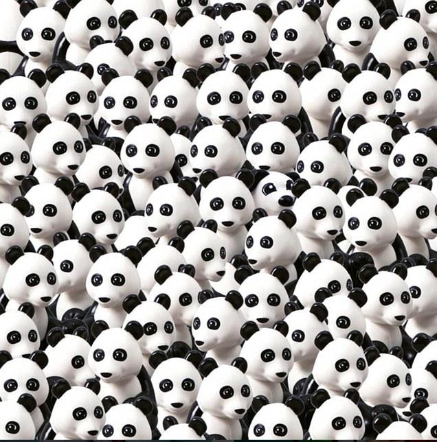 Keresd a nem pandát!